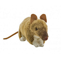 Bandicoot 28cm Australian Native Plush