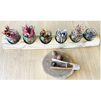 Raw Edge Wooden Paint Jar Holder & 6 SMALL Jars