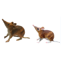 Bandicoot & Joey Replica