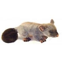 Ringtail Possum 30cm Australian Native Plush