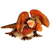 Frilled Neck Lizard 34cm Australian Native Plus