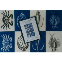Cyanotype Fanciful Fish Kit