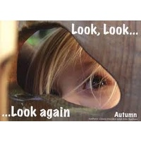 Look, Look...... Look Again Autumn