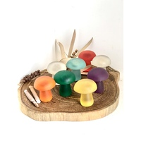 Rainbow Resin Mushroom Set 8