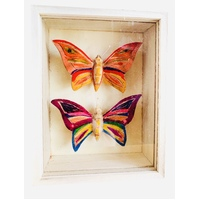 Decorate & Display Butterfly