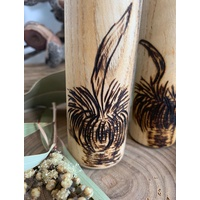 Balga Xantheora Grass Tree Shakers