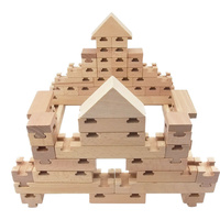 The Budding Builder 100pc Set