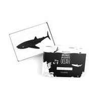 Magnificent Animals from Above & Below the Oceans Flash Cards